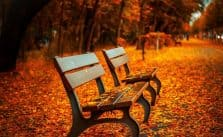 Gambar Kursi Taman Terbaik