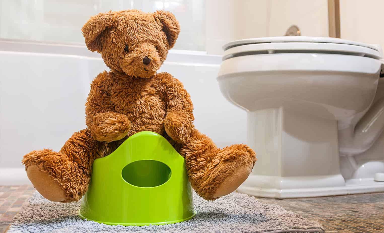 Potty Training Toilet untuk Anak