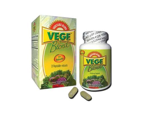 Multivitamin dan Mineral Vege Blend 21 Vegetable Extracts for Adult