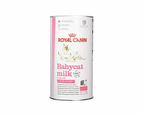 Susu untuk Kucing Royal Canin Babycat Milk