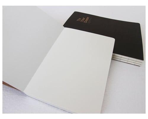 Buku Harian Polos