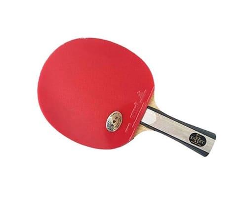 Raket Tenis Meja Terbaik Palio Expert 2