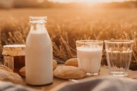 Susu Berkalsium Tinggi untuk Kesehatan Tulang Terbaik