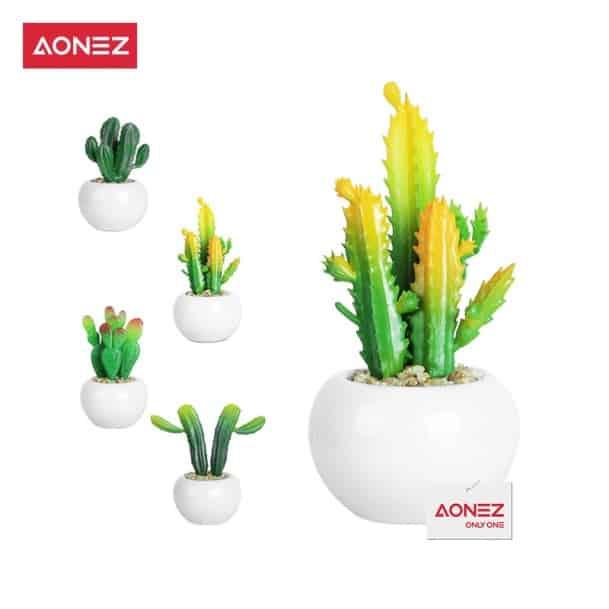 Kado Ulang Tahun untuk Shabat Wanita Aonez Bunga Hiasan Kaktus Hias dengan Pot Keramik Tanaman Sukulen