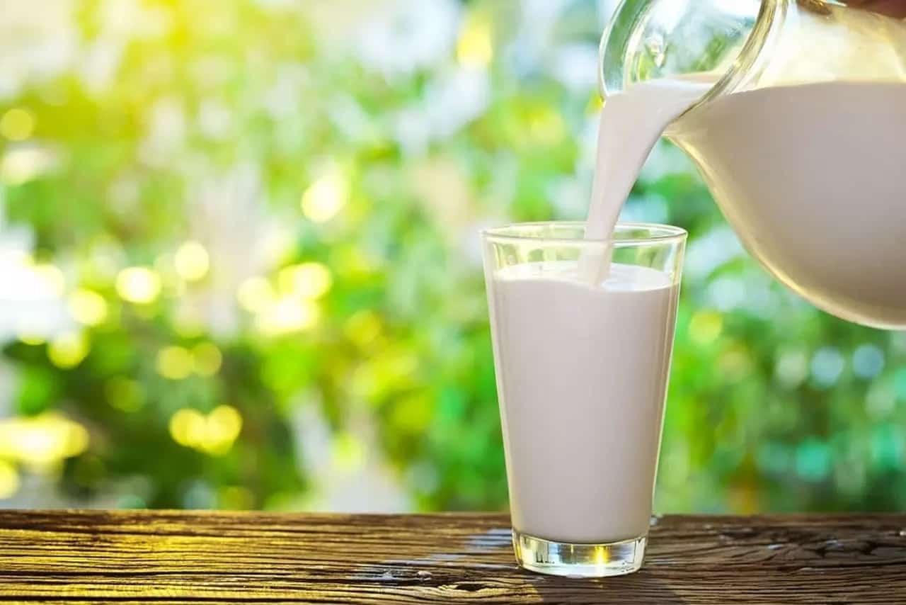 Susu Rendah Lemak untuk Diet Terbaik