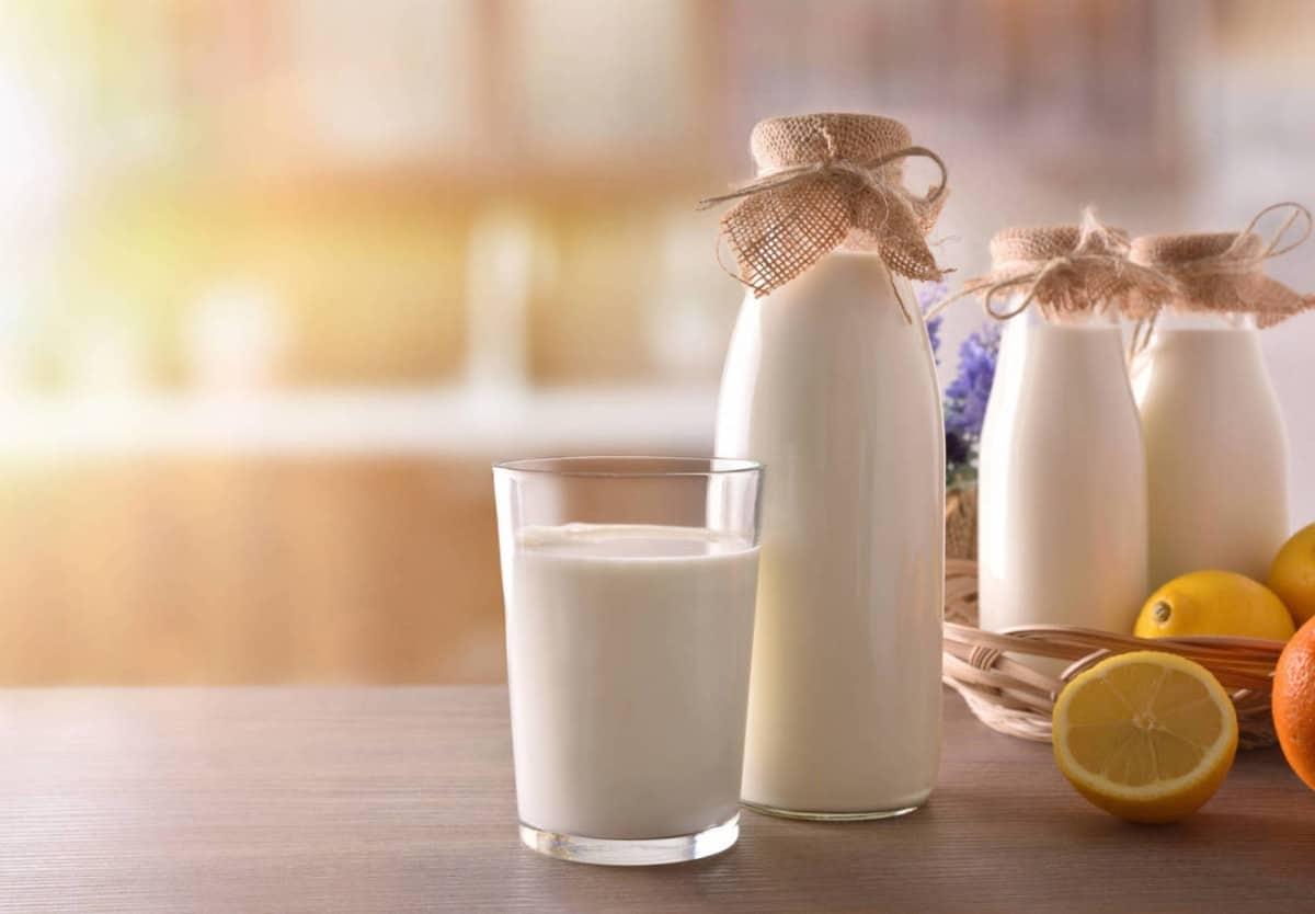 Susu untuk Tulang dan Sendi Terbaik