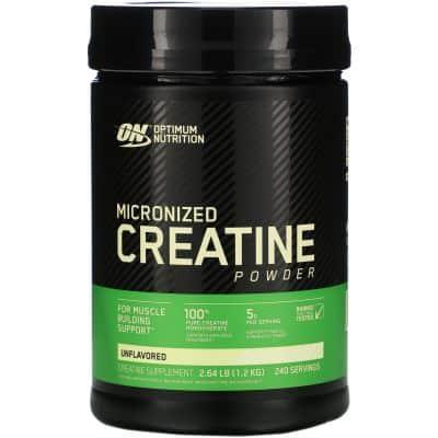 Suplemen Fitness Terbaik Optimum Nutrition Micronized Creatine Powder